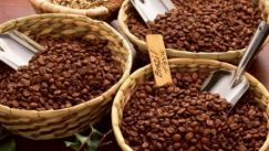 Robusta coffee prices rose to highs of more than 4 years