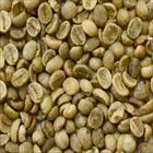 WASHED ARABICA GREEN COFFEE BEANS GRADE 1 SCREEN 16