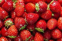 Danh sách các loại trái cây tốt cho bà bầu