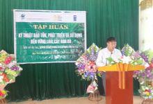 Tổ chức lớp tập huấn Bảo tồn và phát triển cây Bon Bo tại huyện Quế Phong