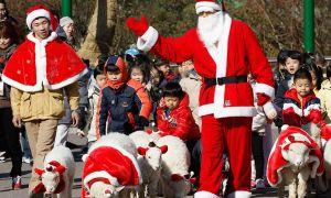 Phong tục đón Giáng sinh tại Hàn Quốc