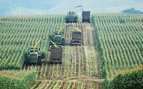 Phát triển nông, lâm nghiệp công nghệ cao ở miền tây Nghệ An