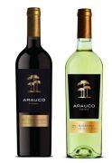 Rượu vang Chile Arauco Reserva