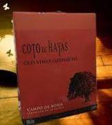 Rượu vang bịch TBN Coto de Hayas (bịch 3L)
