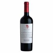 Rượu vang Chile Errazuriz Single Vineyard (Red – White)