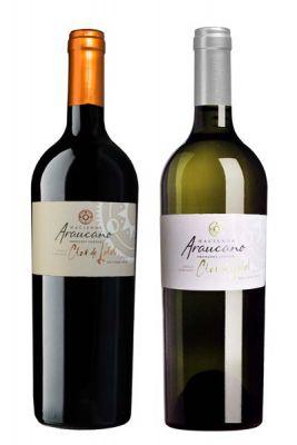Rượu Vang đỏ CLOS DE LOLOL(vang Hưu cơ)