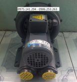 Máy Thổi Khí Con Sò RB-022