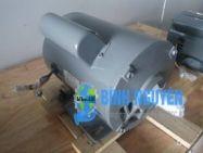 Động Cơ Điện HITACHI EFOU -KQ 3.7KW-4P