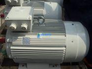 Động Cơ ENERTECH ESC022002
