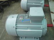 Động Cơ ENERTECH ESC005502