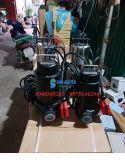 Bơm Thả Chìm Nước Thải Nhẹ (Gang) STAC Alpha V Pro 50-2/110 M/T