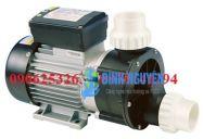 Máy Bơm Đầu Nhựa Spa Pool EWARA TDA 150