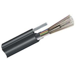 Figure 8 Cable(GYTC8A)
