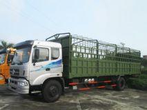 Xe tải thùng Trường Giang DFM EQ8TC4x2L-KM