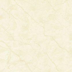 GẠCH LÁT NỀN BDN80 - 832