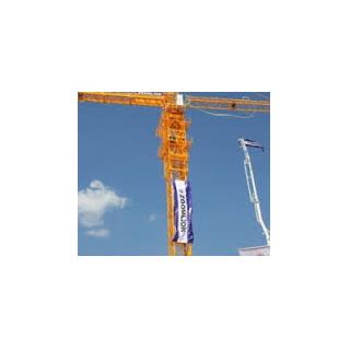 Cẩu tháp QTP-6015