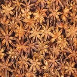 Hoa hồi (Aniseed - standard)
