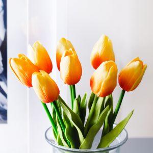 Hoa tulip cam