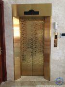 Các mẫu cửa tầng thang máy đẹp