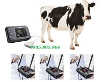 Máy siêu âm cầm tay cho trâu, bò Dakin DK200A