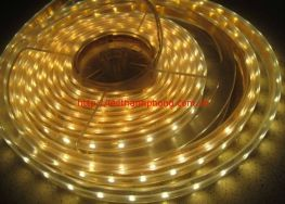 Led dây dán-5050 màu vàng