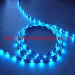 Led dây dán 5050 xanh dương