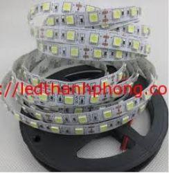 led dây 5050 không keo