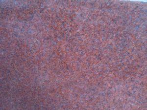 Đỏ Rubi Ấn Độ Hoa Nhỏ