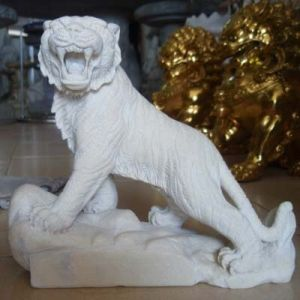 Hổ đá trắng
