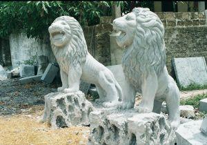sư tử đá 1