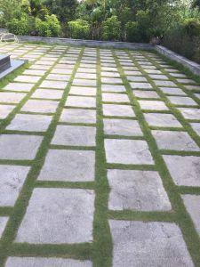 Sân biệt thự lát đá băm khảm cỏ