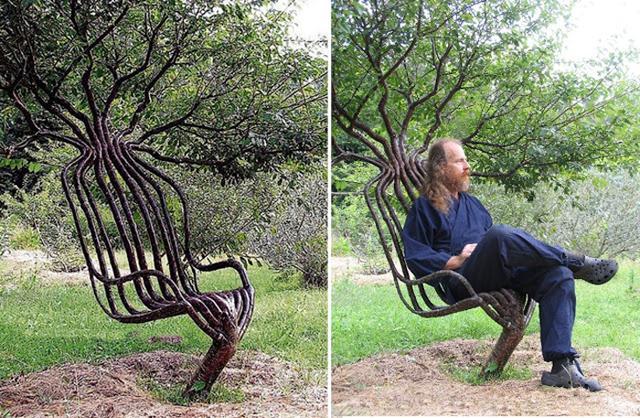 """Ý tưởng """"trồng ghế"""", chục năm sau bán cả nghìn USD một chiếc vẫn chẳng có hàng bán"""