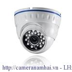 Camera Dome WIDS100‐NT30