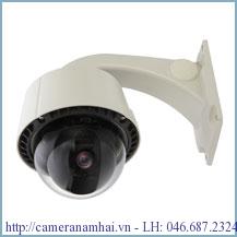 Camera D - max DMC-10SEW