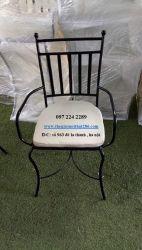 ghế sắt NT1