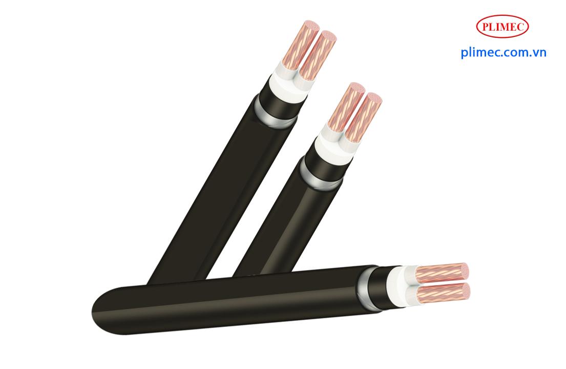 Cáp ngầm 2 ruột hạ thế LS Vina-Cu/XLPE/PVC/DSTA/PVC-2x120sqm