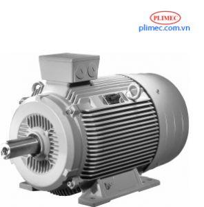 Động Cơ Điện Siemens 1LE1- IMB3 15Hp-11kW-380V; Sản Xuất Tại Châu Âu-EU