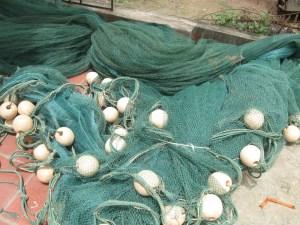lưới vét cá