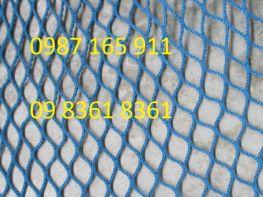 Lưới an toàn xanh