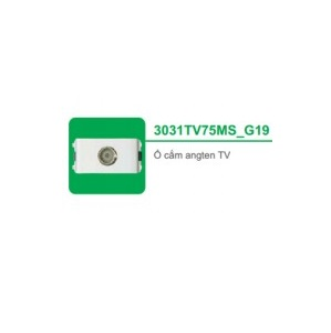 Ổ CẮM ANGTEN TV 3031TV75MS_G19