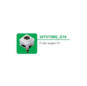 Ổ CẮM ANGTEN TV 30TV75MS_G19 - SERIES S-CLASSIC