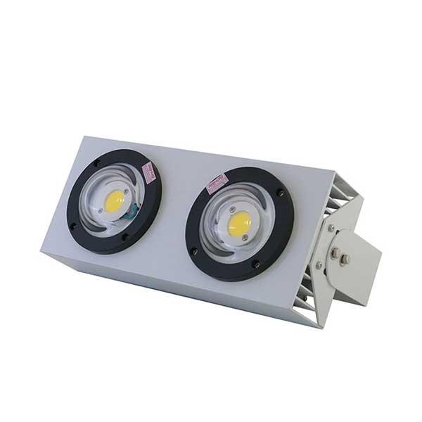 Đèn LED Chiếu Bong 100W D CB02L/100W Rạng Đông