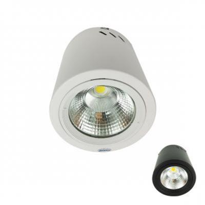 Đèn LED Downlight 25W gắn nổi PSDOO196L25 Paragon