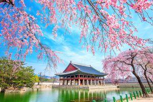 SEOUL – JEJU – EVERLAND