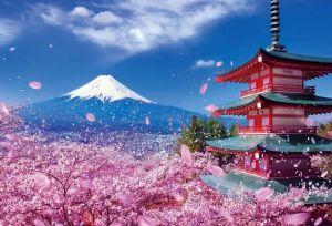 TOKYO - NÚI PHÚ SĨ - ODAIBA