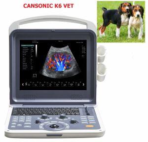 Máy siêu âm động vật 4D Cansonic K6 VET