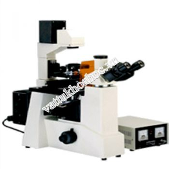 Kính hiển vi huỳnh quang OME-TOP PF-583I