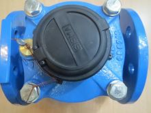 Đồng hồ đo lưu lượng nước SISMA - DN 80 - ITALY - Châu Âu - G7