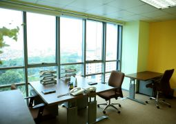 Tầm quan trọng của ánh sáng tự nhiên trong phòng làm việc