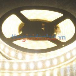 LED dây HHX-508160-35